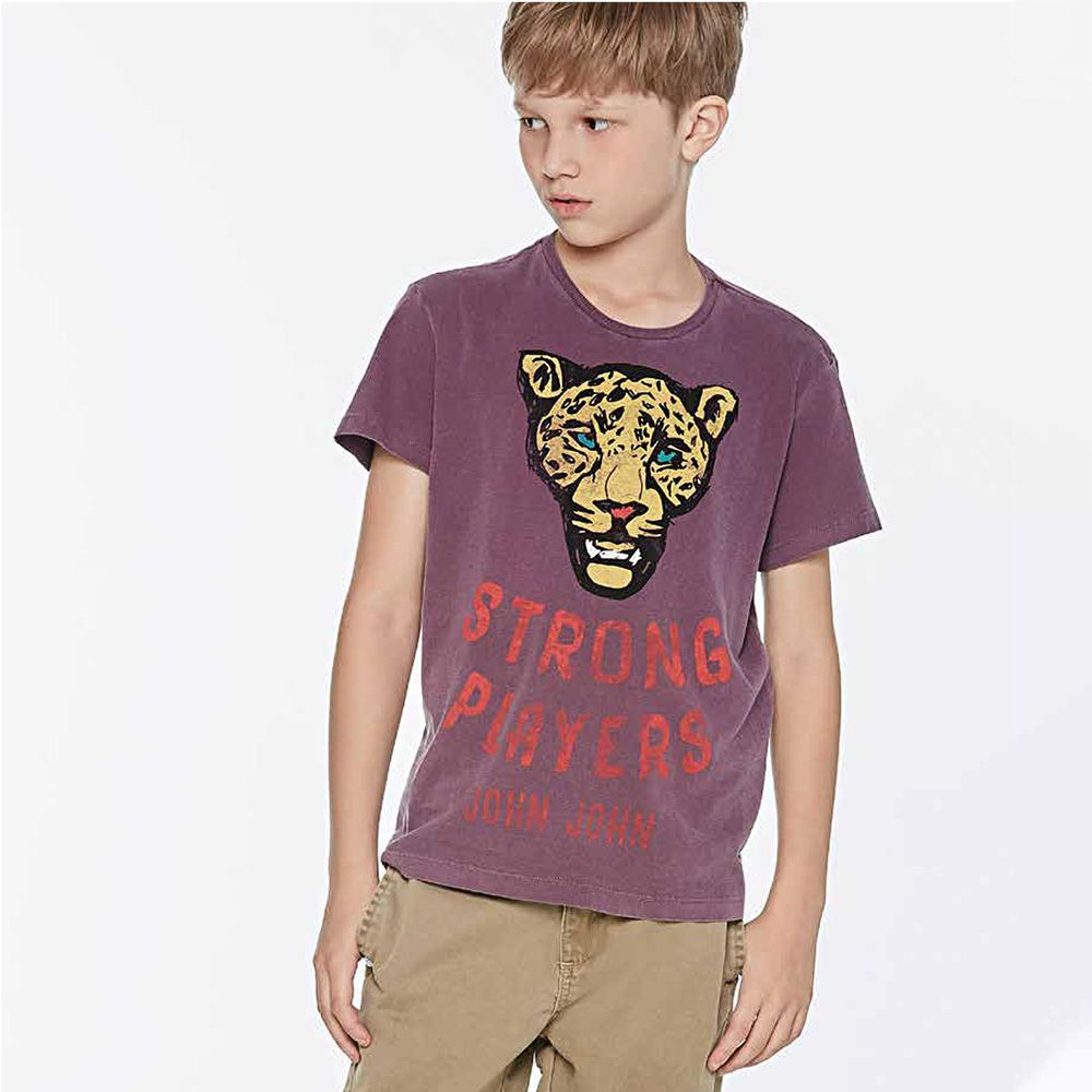 Camiseta Menino John John Rg Tiger Kids Bordo