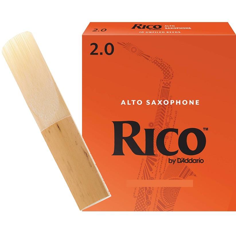 Palheta RICO REEDS Sax Alto 2