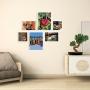6 Molduras COM Revelação Fotográfica (100cm X 90cm)