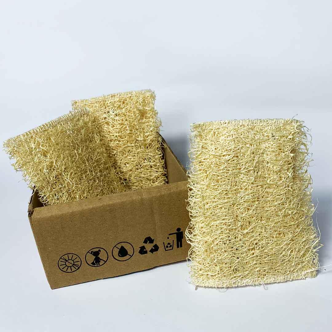 Esponja Vegetal - Kit com 3 unidades