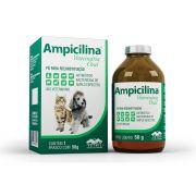 AMPICILINA ORAL VETNIL 50G