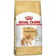 Royal Canin Pomeranian Cães Adultos