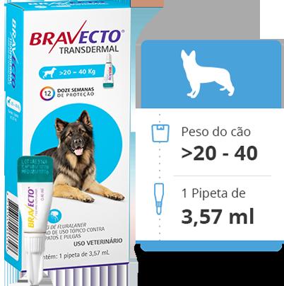 Bravecto Antipulgas e Carrapatos MSD Comprimido para Cães de 20 kg a 40 KG