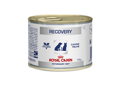 ROYAL CANINE/FELINE RECOVERY WET 195G