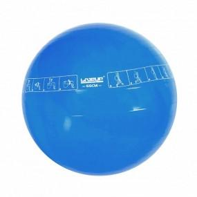 Bola Suiça 65cm com Ilustração Liveup