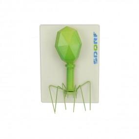 Modelo de Bacteriófago