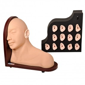 Simulador Avançado de Exame de Ouvido