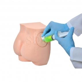Simulador de Injeção Intramuscular No Glúteo E Sondagem Retal