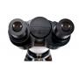 Microscopio Biológico Binocular c/ Aumento de 40x a 1.600x Led 3w
