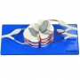 Modelo Anatomico Medula Espinhal Ampliada