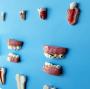 Modelo Anatomico Patologia Dentária em 12 Partes