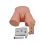 Simulador de Cateterização Vesical Bissexual Adulto com Dispositivo Eletrônico