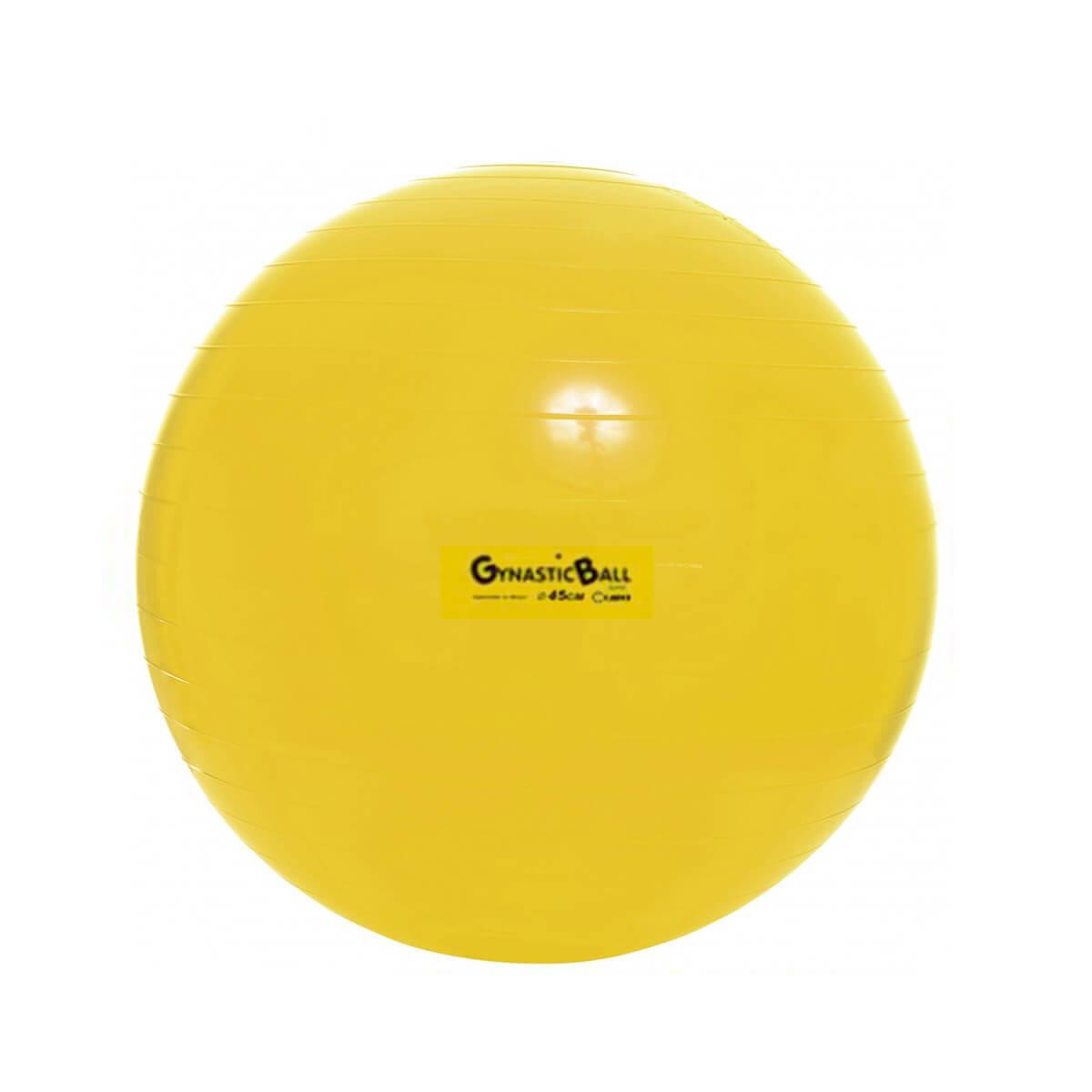 Bola p/ Exercícios Gynastic Ball 45cm c/ Dvd de Exercícios