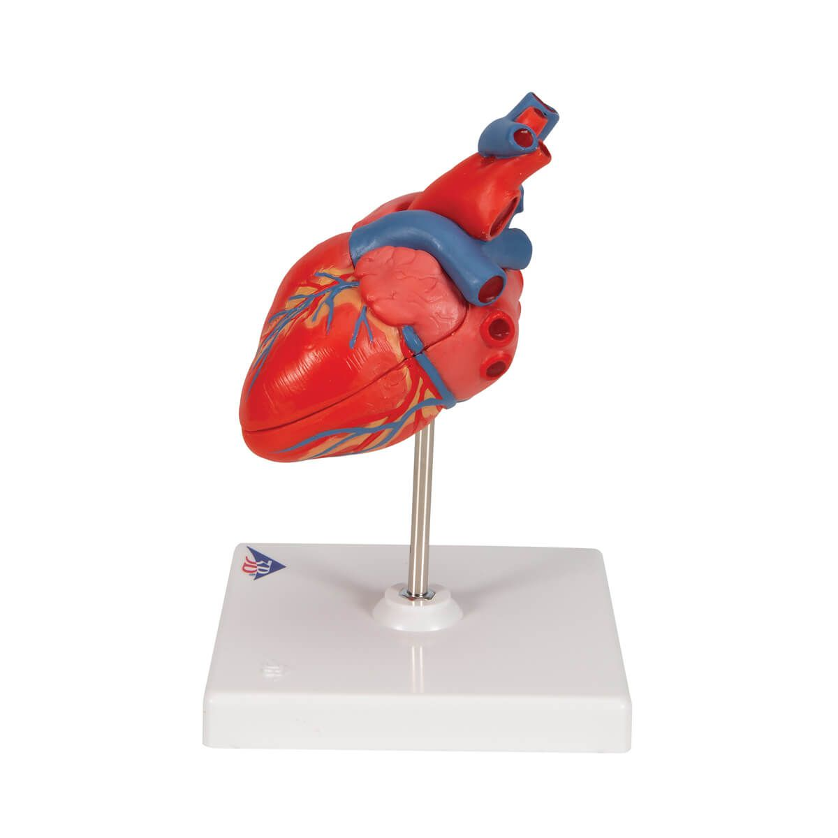 Coração Clássico, 2 Partes