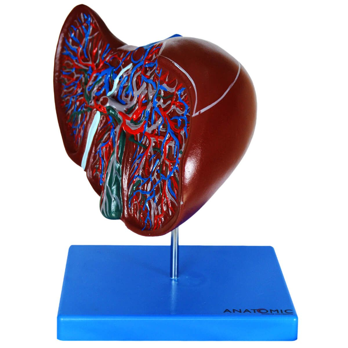 Fígado Luxo