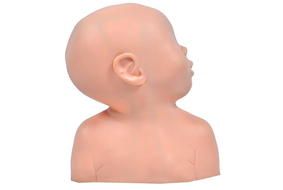 Simulador Cabeça Pediátrica para Punção Venosa