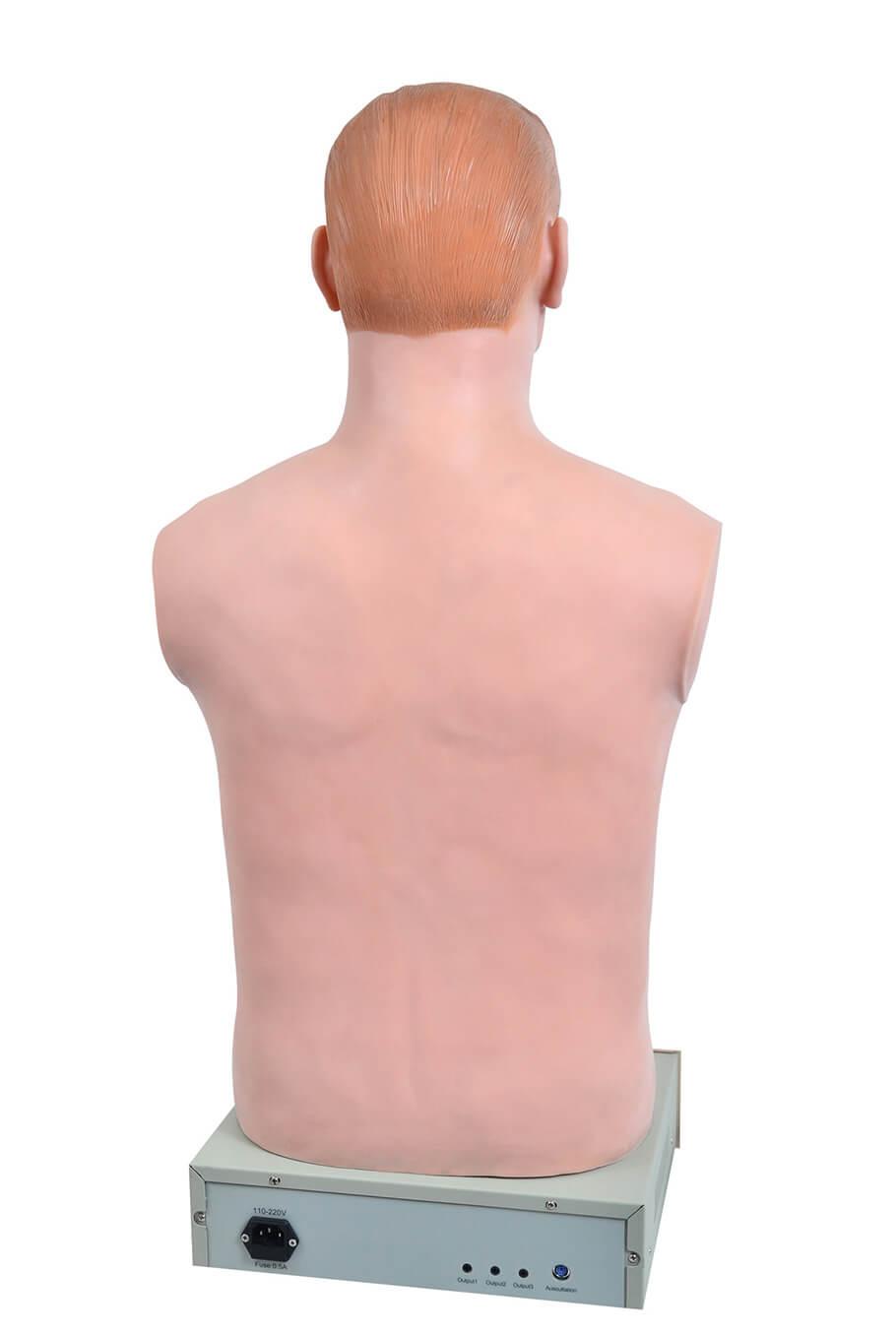 Simulador de Ausculta Cardiopulmonar c/ Controle Remoto