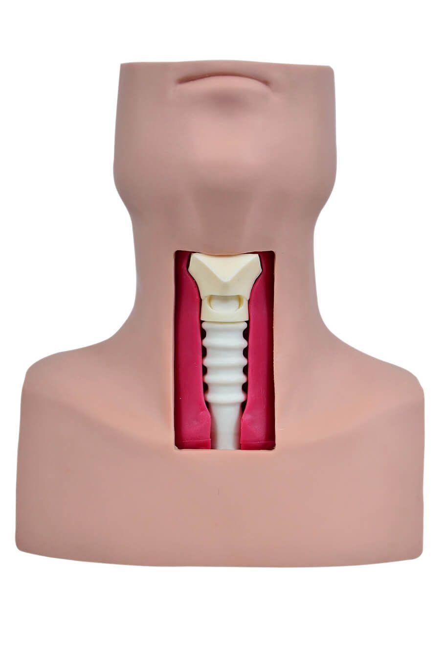 Simulador de Traqueostomia
