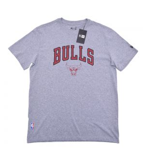 Camiseta Chicago Bulls Essentials Team NBA New Era
