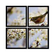 Quadro Mosaico 72x72cm Pássaro Árvore De Orvalho C/ Mold.