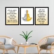 Kit 3 Quadros Decorativos 33x43 Lei da Mente - Budismo