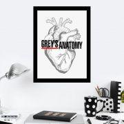Quadro Decorativo 27x36 Grey's Anatomy Coração