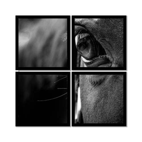 Quadro Mosaico 72x72cm Olhar Do Cavalo C/ Mold.