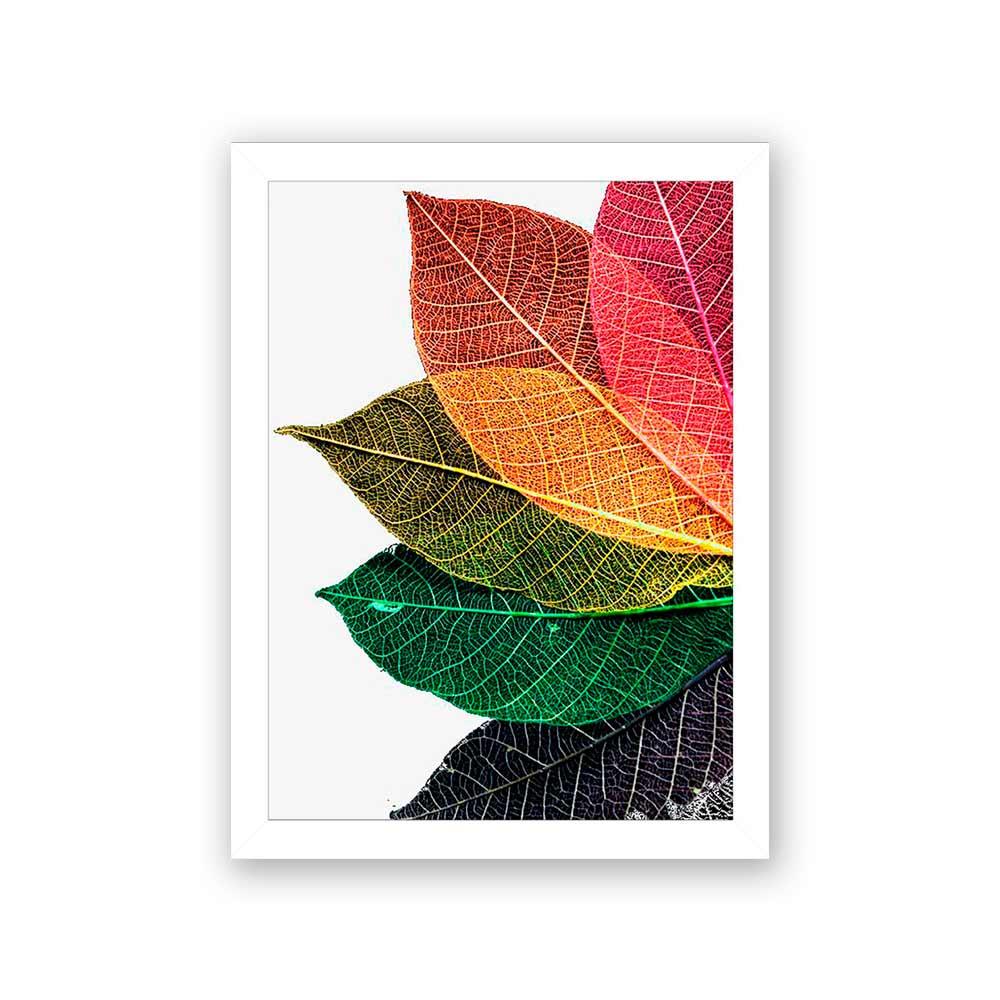 Quadro Decorativo 27x36 Folhas Coloridas de Outono