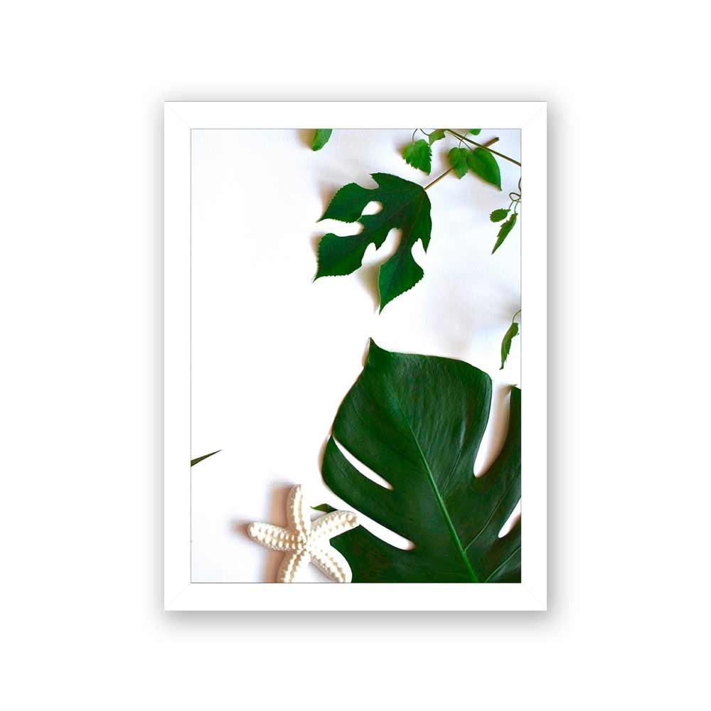Quadro Decorativo 27x36 Foto de Folhagem com Estrela do Mar