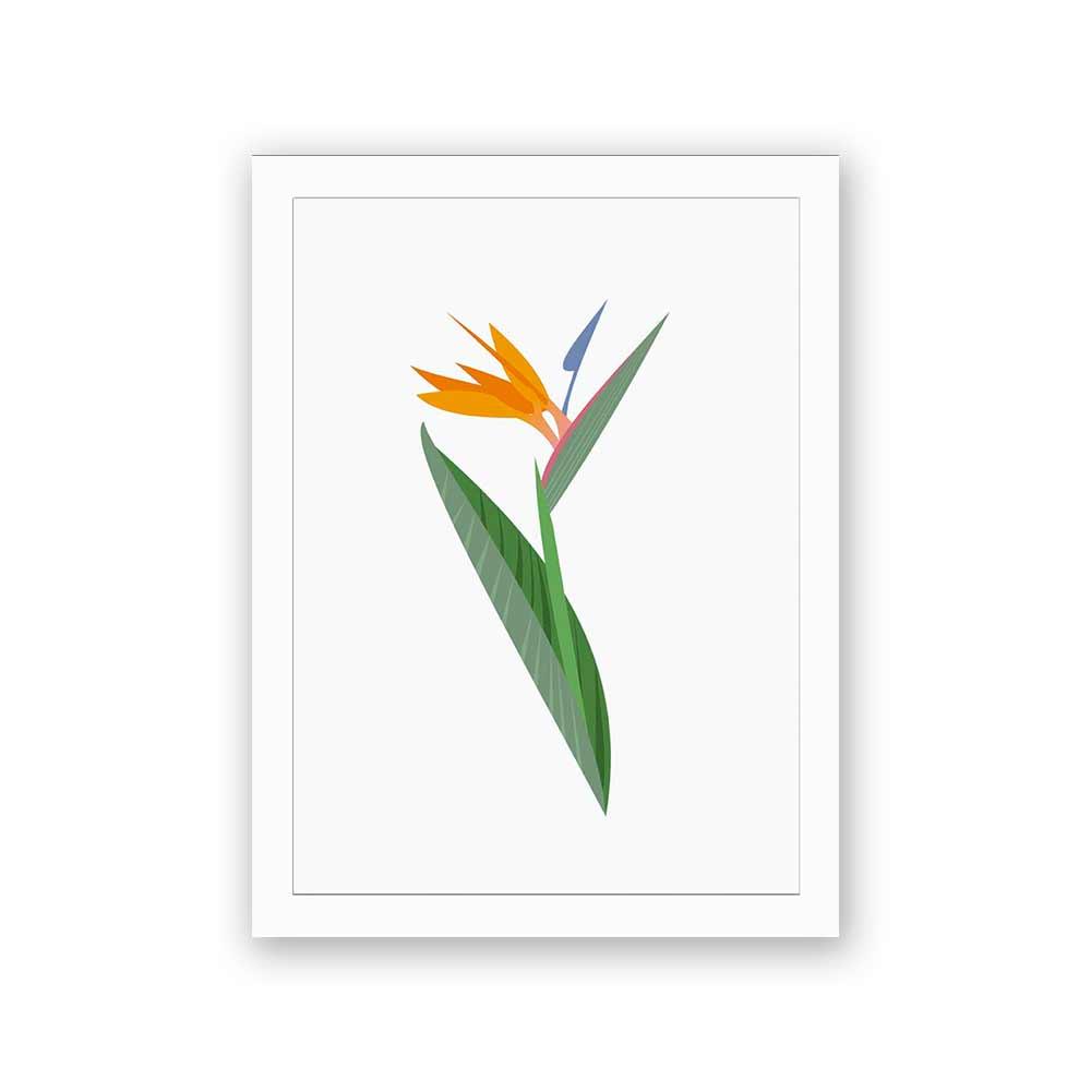 Quadro Decorativo 27x36 Ilustração de Flor