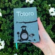 Anime - Meu Amigo Totoro