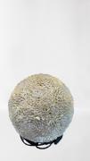 Luminária De Conchas V1051