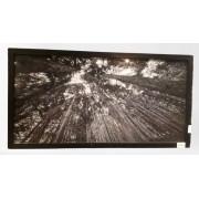 Quadro Preto- Vista Àrvores 430-05