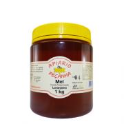 Mel Florada de Laranjeira Puro 1 Kg - Apiário Peçanha