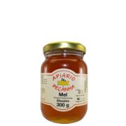 Mel Florada Silvestre Puro 300 g