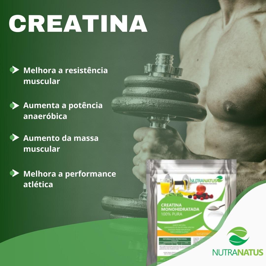 Combo Glutamina Pura 600g + Bcaa8 Puro 600g + Creatina 600g