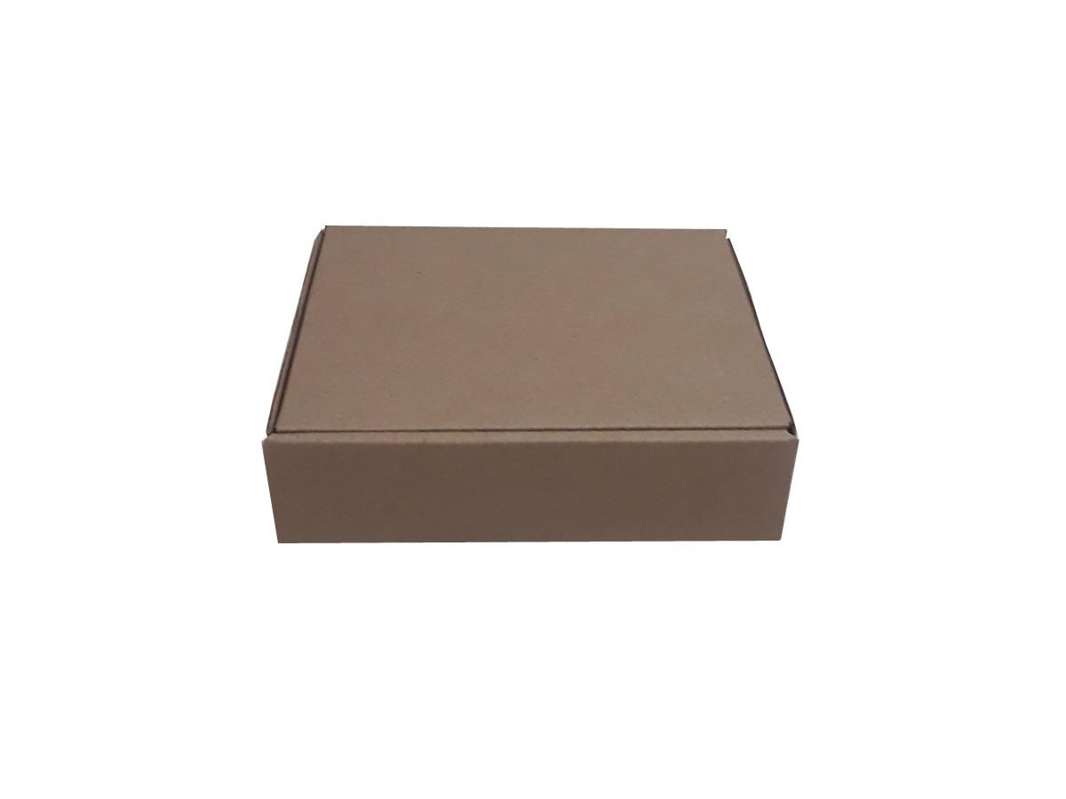 25 Caixas de Papelão 23x19x6 cm LINHA COMUM
