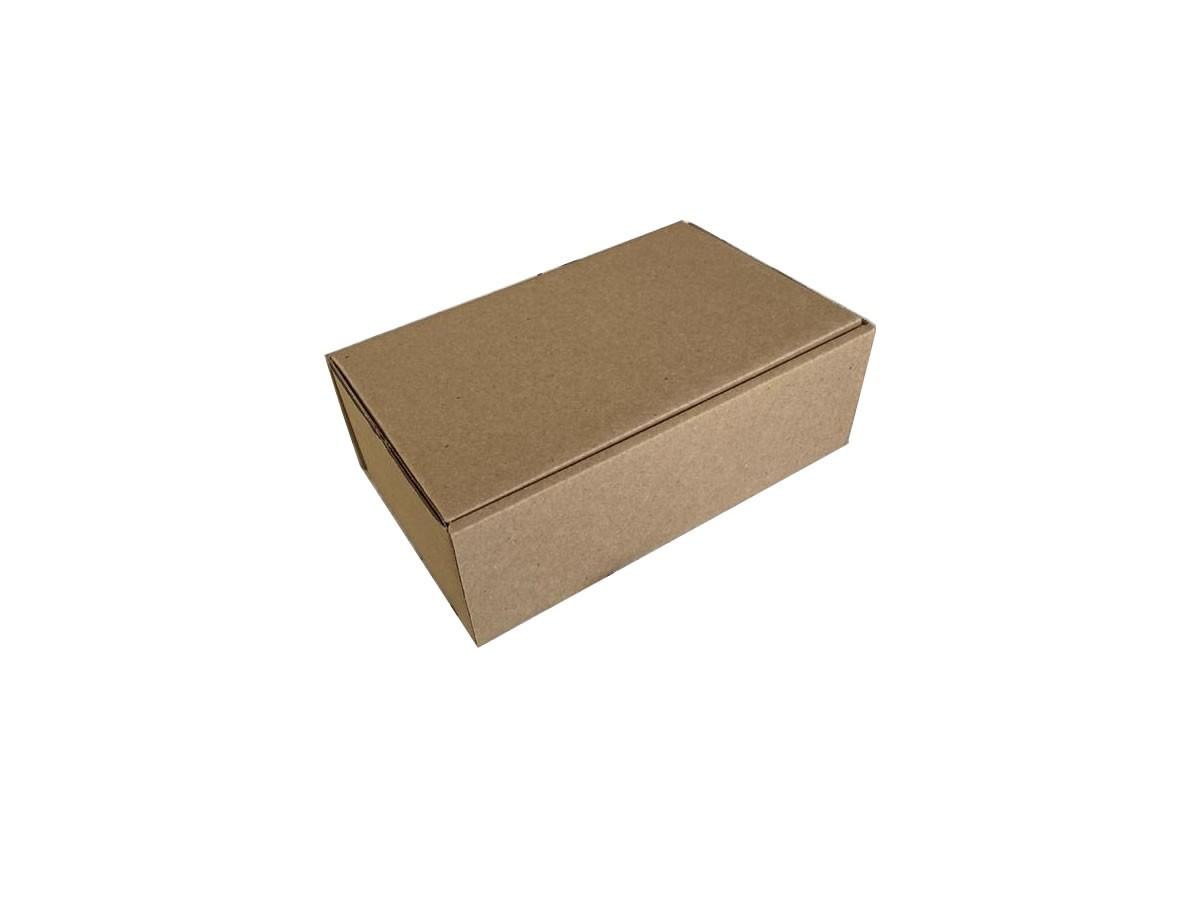 25 Caixas de Papelão 24x15x8,5 cm LINHA PRIME