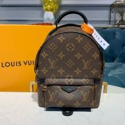 MOCHILA LOUIS VUITTON PALM SPRINGS MONOGRAM MINI