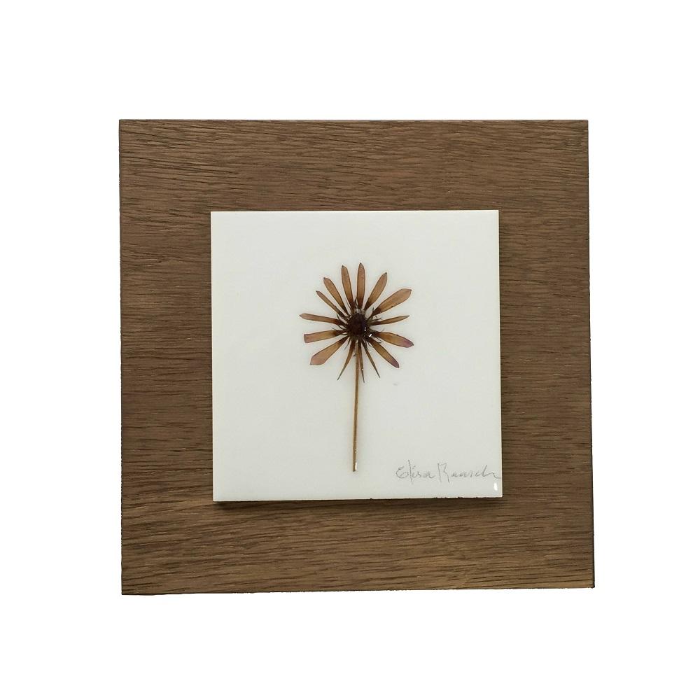 Quadro Botânico 25x25 Flor 2
