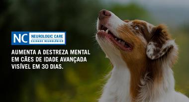 Ração Nestlé Purina Pro Plan Veterinary Diets Cães Neurologic Care 7,5 Kg