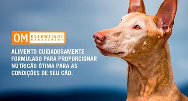 Ração Nestlé Purina Pro Plan Veterinary Diets Cães OM Overweight 7,5 Kg