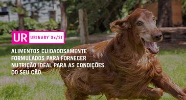 Ração Nestlé Purina Pro Plan Veterinary Diets Cães UR Urinary 7,5 Kg