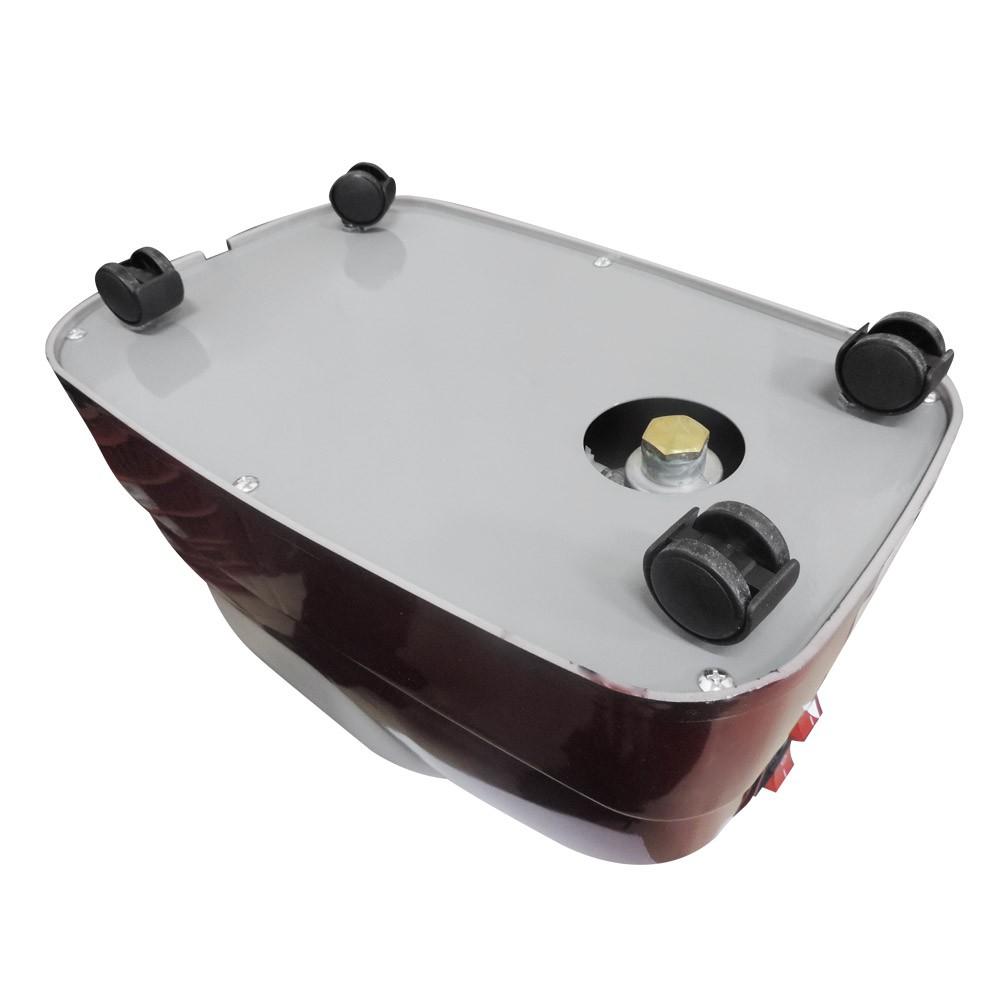 Steamer Vaporizador Passadeira a Vapor Profissional 1350W W-9800