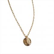 Colar Longo Cartier Búzios Resina com Medalha Trabalhada 5085