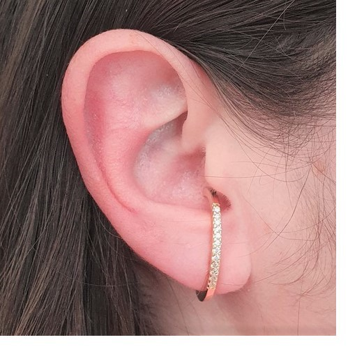 Brinco Earhook Zirconias Oval 4811