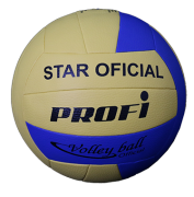 Bola Oficial Volleyball