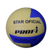 Star Volleyball