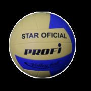 Star Volleyball