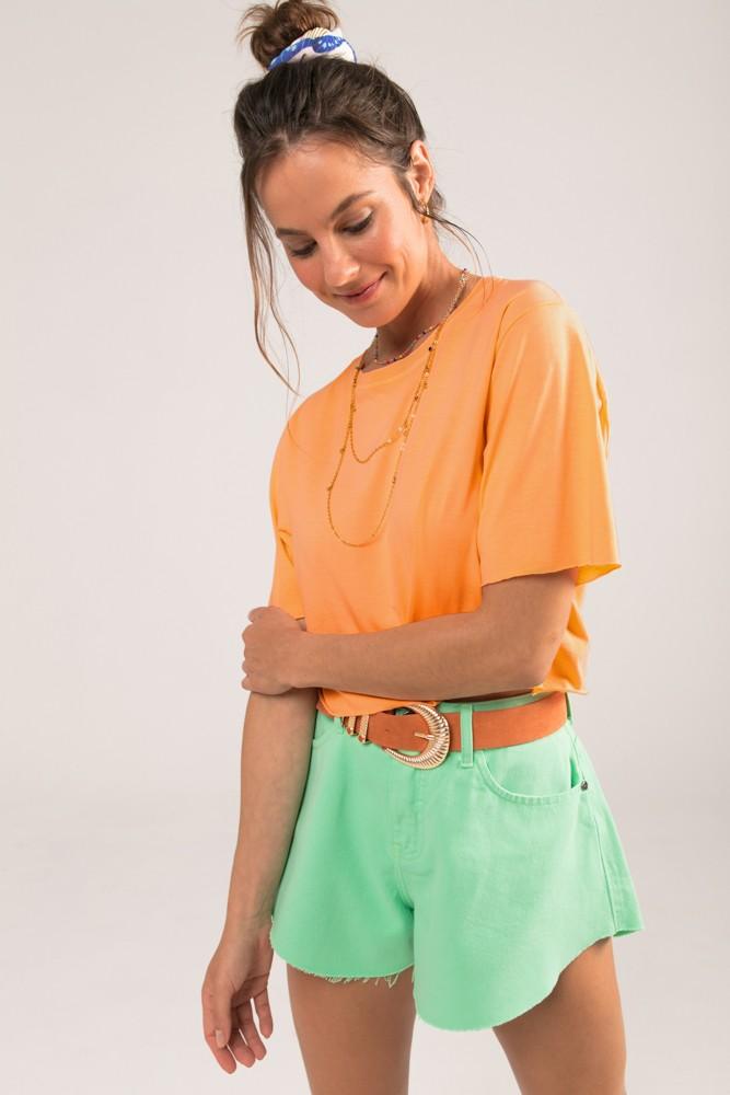 Shorts Godê Colors Verde